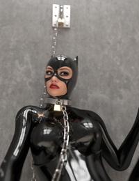 -Catwoman Captured 1 - part 2